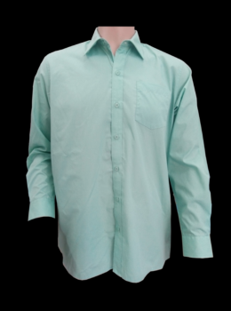 Boy shirt LS mint color