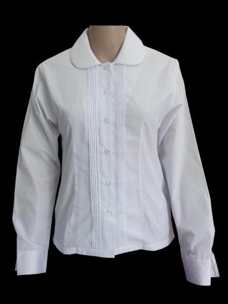 Peter pan pin tuck blouse LS png