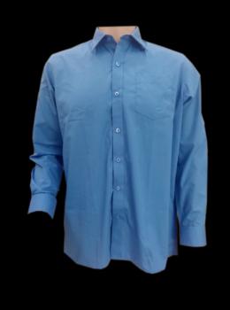 boy shirt LS clasicc blue